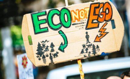 proteste cambiamento climatico